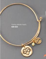Charm Bracelet Family