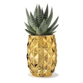 Palm Chic Pineapple Planter